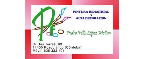 pintor-pedro-felix475B7774-252D-9A8C-9450-665969B37C7E.jpg