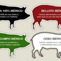 Etiquetado IBERICO